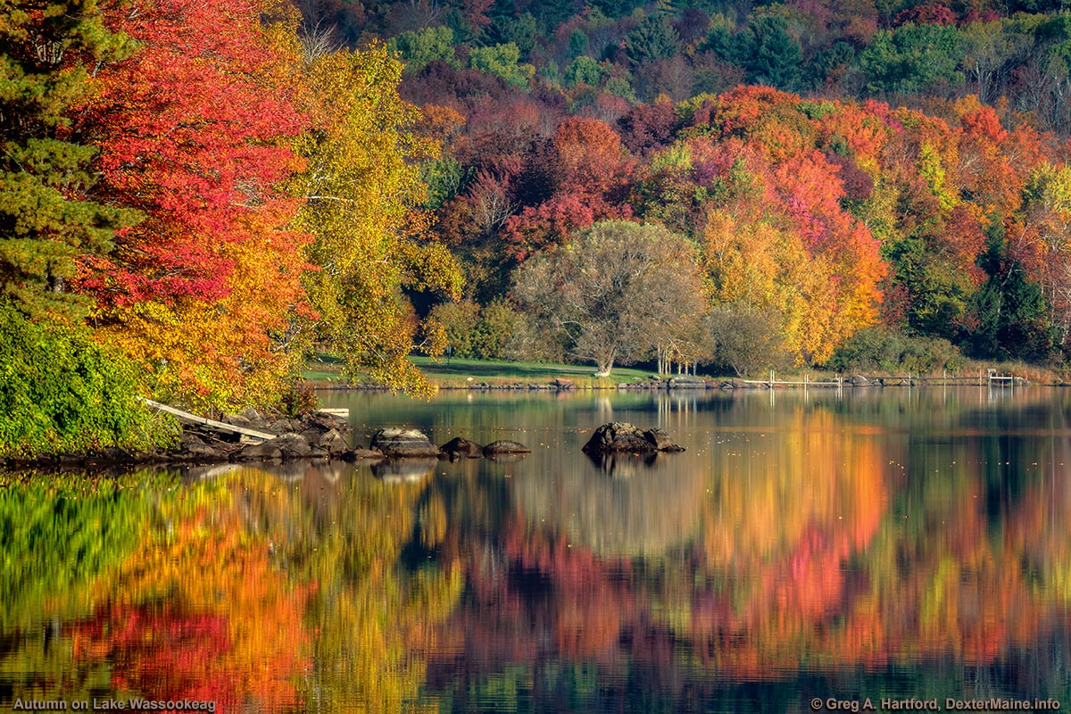 Lake Wassookeag Autumn Colors, October 10, Dexter, Maine