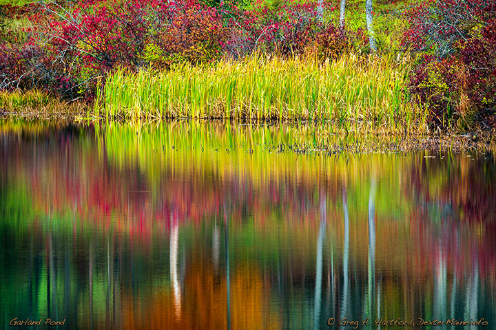 Reflections on Garland Pond