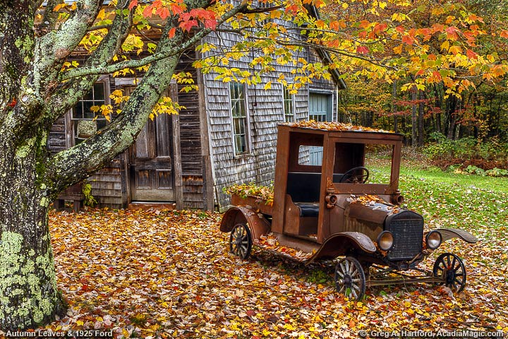 Antique 1925 Ford Pickup during autumn season