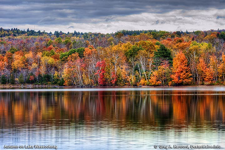 Autumn trees on the shore of lake Wassookeag in Dexter
