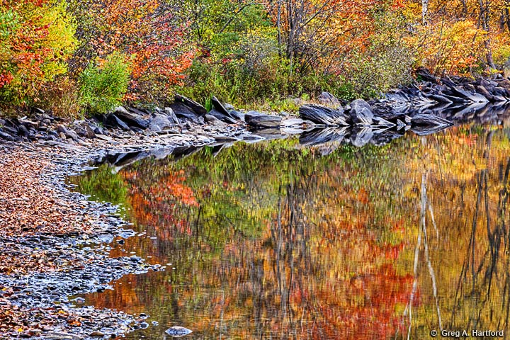 Autumn reflection of colored leaves in Lake Wassookeag