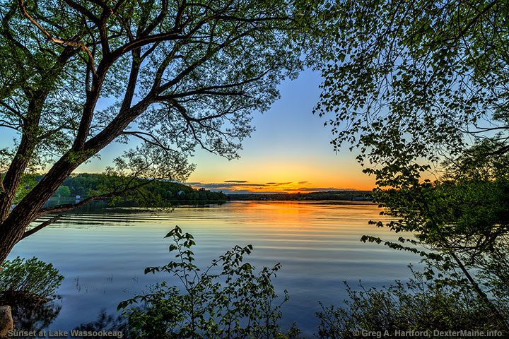 Looking through the trees at sunset over Lake Wassookeag in Dexter, Maine